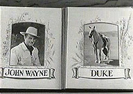 wayne and duke