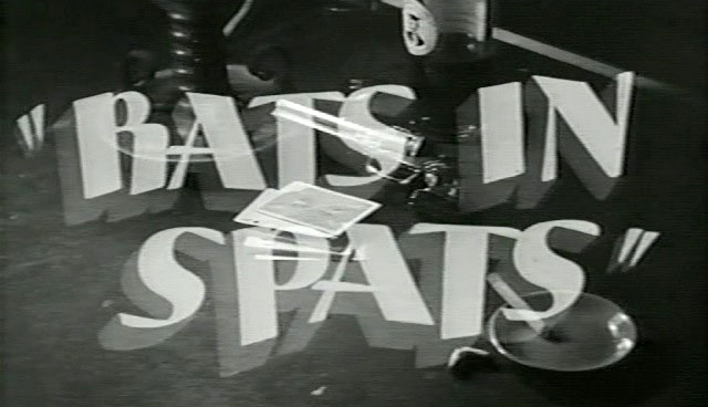 rats-in-spats-title