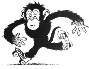 TKlein17_Monkey300