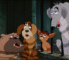 Dog Days For Disney