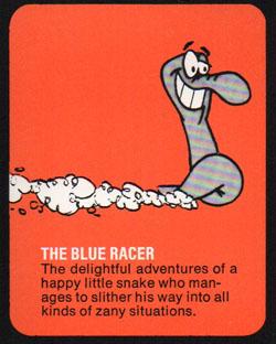blue-racer
