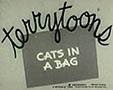 cats-bag