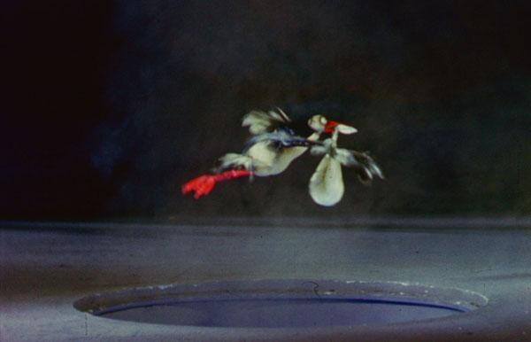 2 Bird600