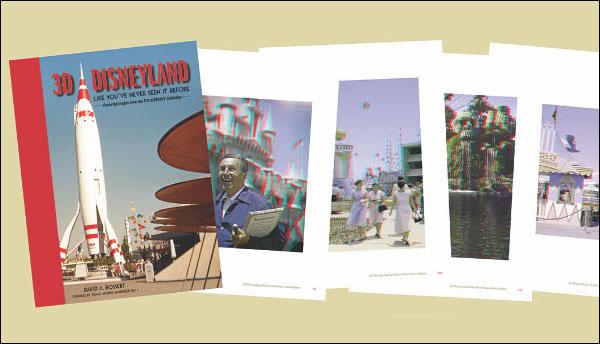 3D Disneyland: A Primer